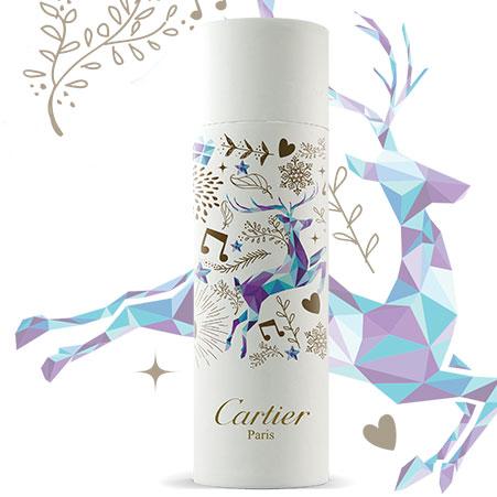 Premier packaging - white